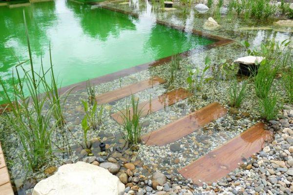Como hacer piscinas naturales awesome fotos with como for Como hacer una piscina natural en casa